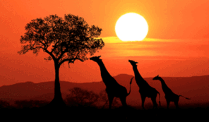 buy-furniture-online-south-africa-sun-set-min